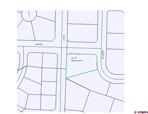 1800 Senate Drive, Montrose, CO 81401 (MLS #750106) :: CapRock Real Estate, LLC