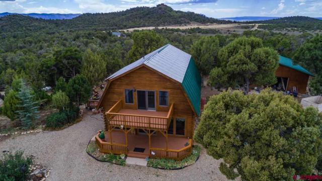 36079 Road N, Mancos, CO 81328 (MLS #750112) :: CapRock Real Estate, LLC