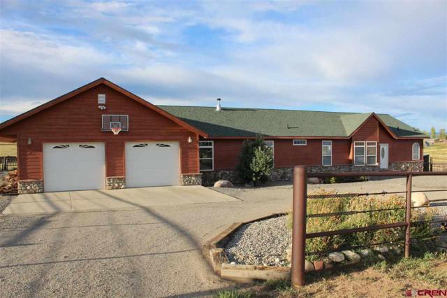 897 Cr 304, Durango, CO 81303 (MLS #750121) :: Durango Home Sales