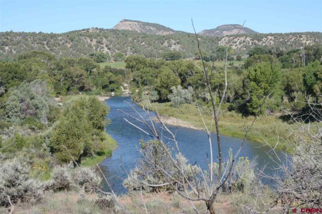 3905 S Hwy 550, Durango, CO 81303 (MLS #750159) :: Durango Mountain Realty