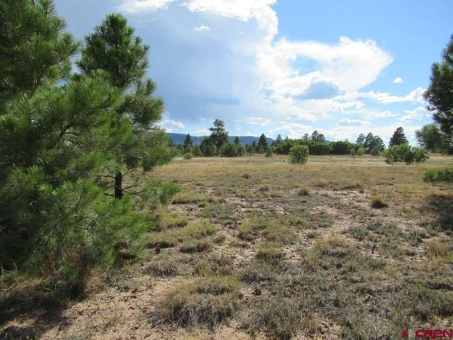 238 Lake Street, Pagosa Springs, CO 81147 (MLS #750169) :: Durango Home Sales