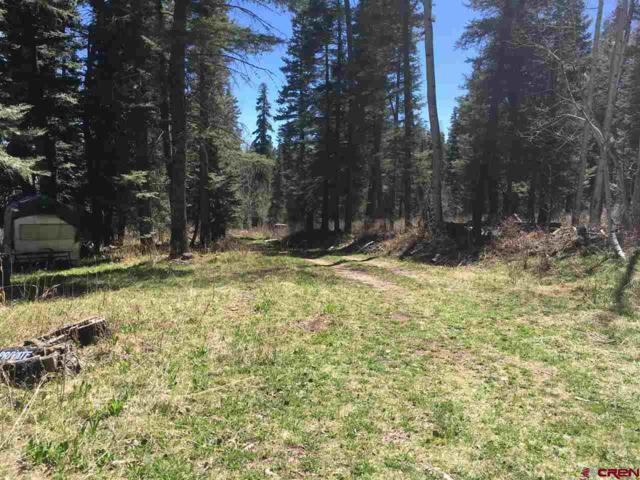 TBD Sierra Verde Road, Durango, CO 81301 (MLS #750173) :: CapRock Real Estate, LLC