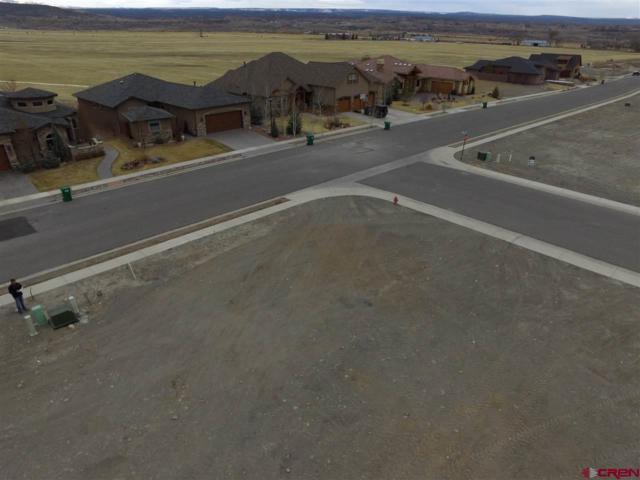 1101 San Sophia Drive, Montrose, CO 81403 (MLS #750174) :: Durango Home Sales