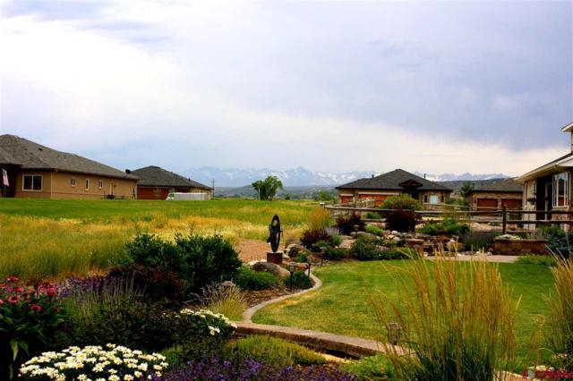 4025 Grand Mesa Drive, Montrose, CO 81403 (MLS #750184) :: Durango Home Sales