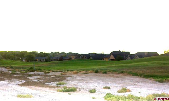TBD San Sophia Drive, Montrose, CO 81403 (MLS #750185) :: Durango Home Sales