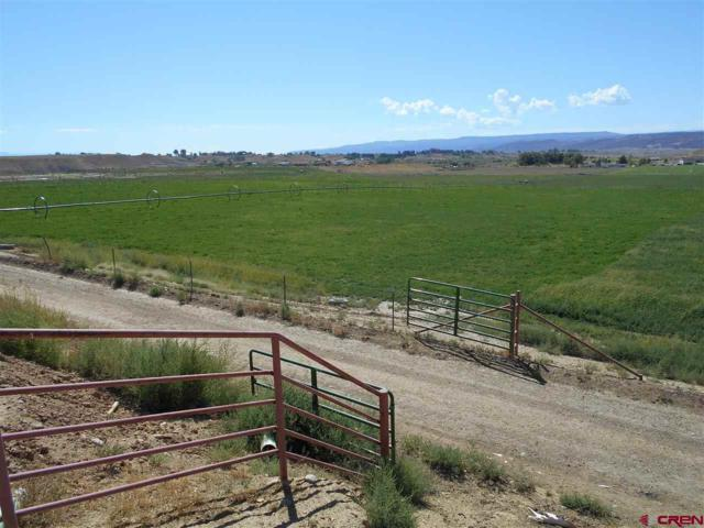 1862 9 Road, Mack, CO 81525 (MLS #750192) :: Keller Williams CO West / Mountain Coast Group