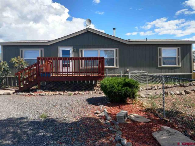 19776 Ward Creek Road, Cedaredge, CO 81413 (MLS #750194) :: Durango Home Sales