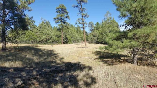 312 Antero Dr, Pagosa Springs, CO 81147 (MLS #750207) :: CapRock Real Estate, LLC