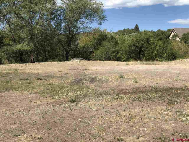 1470 SE Stonebridge Drive, Cedaredge, CO 81413 (MLS #750246) :: Durango Home Sales