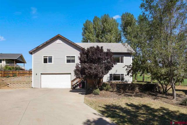 121 Linda Court, Durango, CO 81301 (MLS #750255) :: Durango Mountain Realty