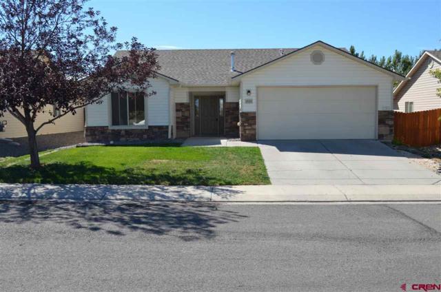 1522 Big Horn Street, Montrose, CO 81401 (MLS #750346) :: CapRock Real Estate, LLC