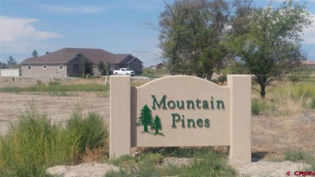 Lot 4 Glacier Drive, Montrose, CO 81401 (MLS #750366) :: Durango Home Sales