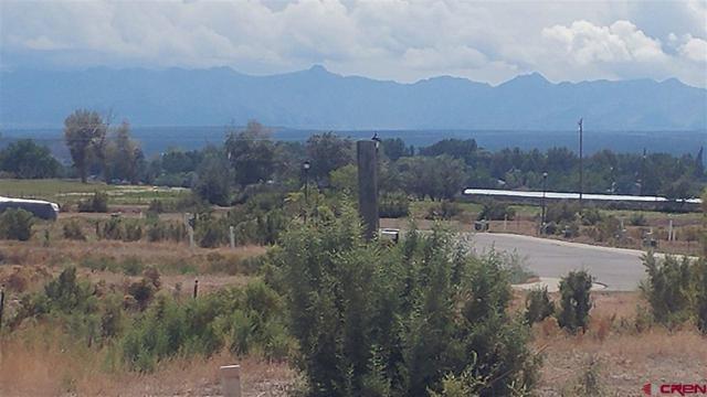 Lot 13 Glacier Drive, Montrose, CO 81401 (MLS #750477) :: Durango Home Sales