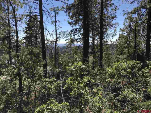 186 Pine Ridge Drive, Bayfield, CO 81122 (MLS #750482) :: CapRock Real Estate, LLC