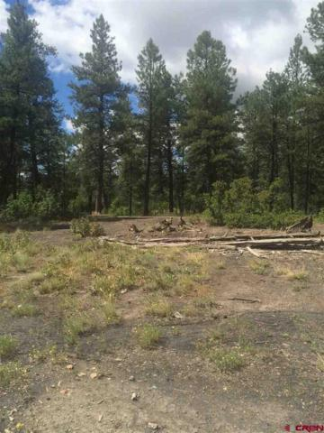 935 W Us Hwy 160, Pagosa Springs, CO 81147 (MLS #750492) :: Keller Williams CO West / Mountain Coast Group