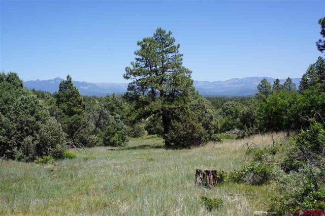 2547 Meadows Drive, Pagosa Springs, CO 81147 (MLS #750501) :: CapRock Real Estate, LLC