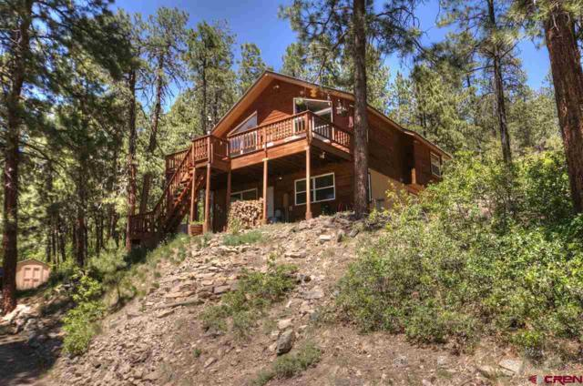 202 Hillside Circle, Bayfield, CO 81122 (MLS #750508) :: CapRock Real Estate, LLC