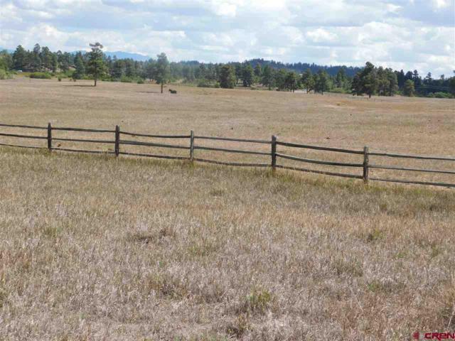 152 Sam Houston Avenue, Pagosa Springs, CO 81147 (MLS #750516) :: Durango Home Sales