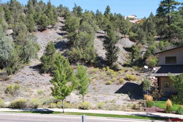 169 Ella Vita Court, Durango, CO 81301 (MLS #750521) :: Durango Mountain Realty