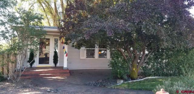449 E Orchard Street, Hotchkiss, CO 81419 (MLS #750532) :: Durango Home Sales