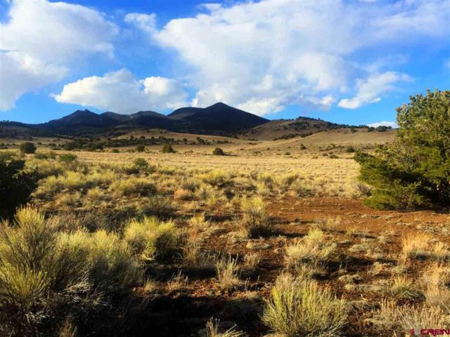 TBD Rio Bravo, Del Norte, CO 81132 (MLS #750543) :: The Dawn Howe Group | Keller Williams Colorado West Realty