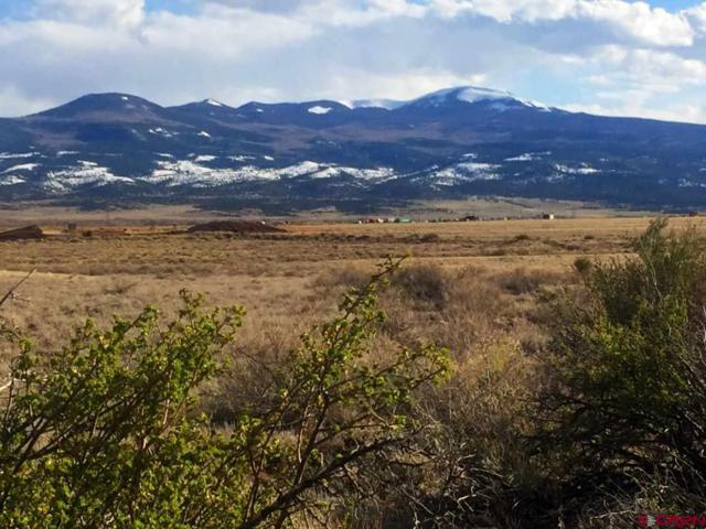 tbd Rio Bravo Trail, Del Norte, CO 81132 (MLS #750546) :: The Dawn Howe Group | Keller Williams Colorado West Realty