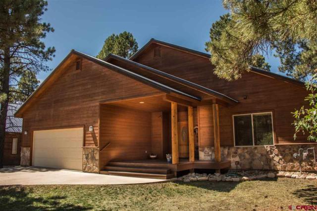80 Sumac Court, Pagosa Springs, CO 81147 (MLS #750566) :: CapRock Real Estate, LLC
