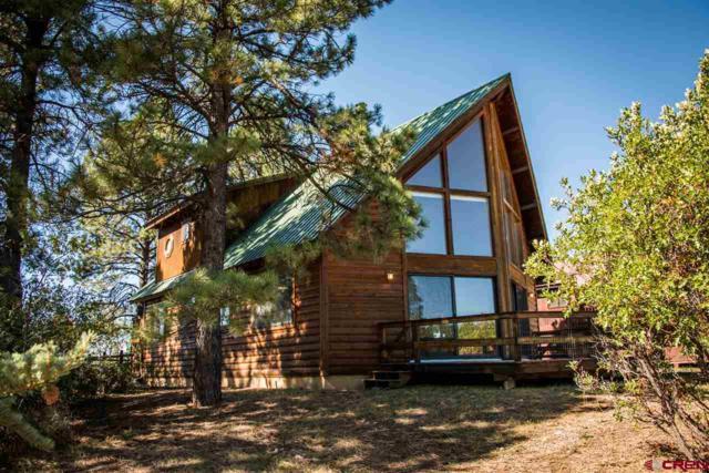 170 Cimarrona Circle, Pagosa Springs, CO 81147 (MLS #750580) :: CapRock Real Estate, LLC