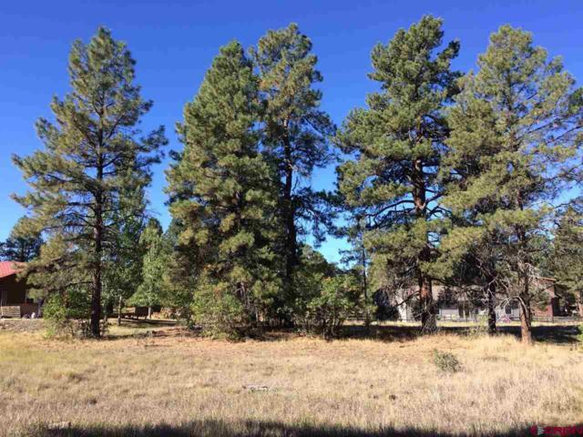 72 Bunker Court, Pagosa Springs, CO 81147 (MLS #750584) :: CapRock Real Estate, LLC