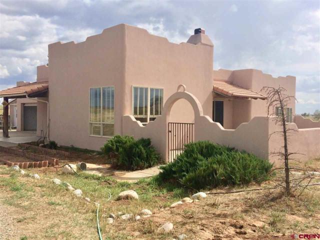 436 Prospect Drive, Durango, CO 81301 (MLS #750612) :: Durango Mountain Realty