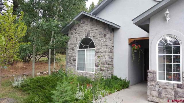 221 Aspenglow Boulevard A, Pagosa Springs, CO 81147 (MLS #750625) :: CapRock Real Estate, LLC