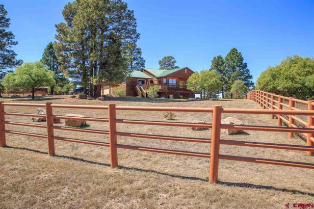 202 E Mccabe Street, Pagosa Springs, CO 81147 (MLS #750635) :: Durango Home Sales