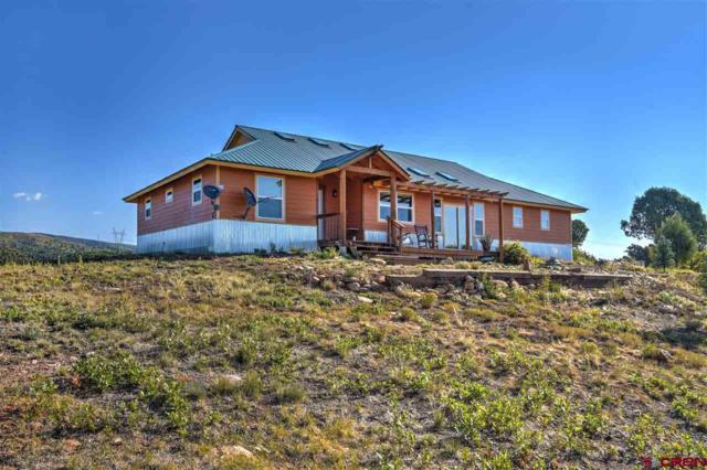 2098 Cr 120, Hesperus, CO 81326 (MLS #750705) :: Durango Mountain Realty