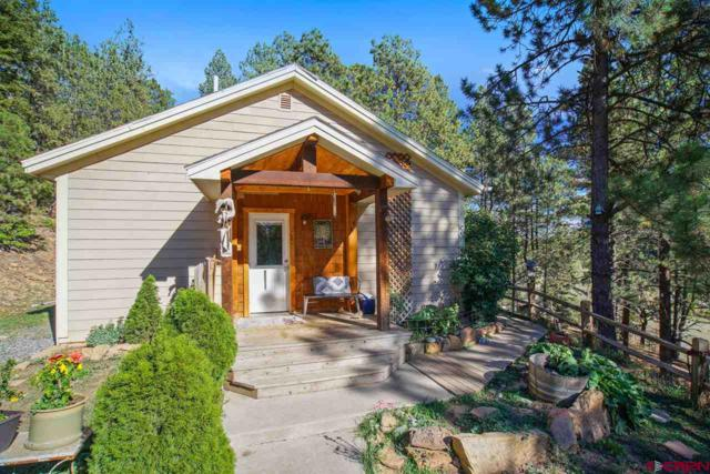 14833 Cr 240, Durango, CO 81301 (MLS #750728) :: Keller Williams CO West / Mountain Coast Group