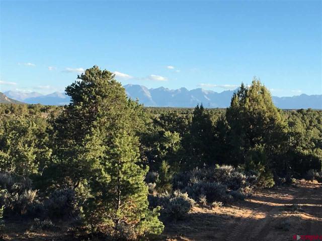 TBD Tiyoweh Trail, Montrose, CO 81403 (MLS #750737) :: CapRock Real Estate, LLC