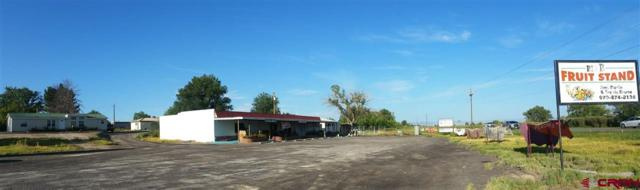 7723 2075 Road, Delta, CO 81416 (MLS #750761) :: Durango Home Sales