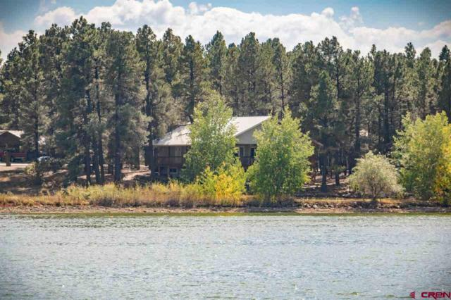 217 Cloud Cap Avenue, Pagosa Springs, CO 81147 (MLS #750762) :: Durango Home Sales