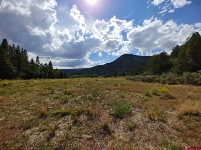 60 Shasta Trail, Hesperus, CO 81326 (MLS #750771) :: Durango Mountain Realty