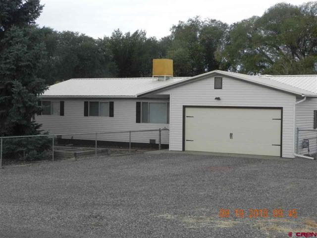 12365 E Spring Circle, Eckert, CO 81418 (MLS #750778) :: CapRock Real Estate, LLC
