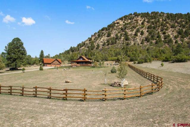 619 Spirit Wind Road, Hesperus, CO 81326 (MLS #750791) :: Durango Home Sales