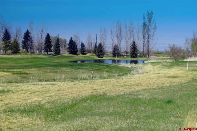 551 Cobble Drive, Montrose, CO 81403 (MLS #750810) :: Durango Home Sales