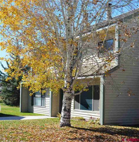 284 Talisman Unit #8, Pagosa Springs, CO 81147 (MLS #750822) :: CapRock Real Estate, LLC