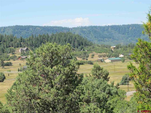 1268 Dichoso Street, Pagosa Springs, CO 81147 (MLS #750838) :: Durango Home Sales