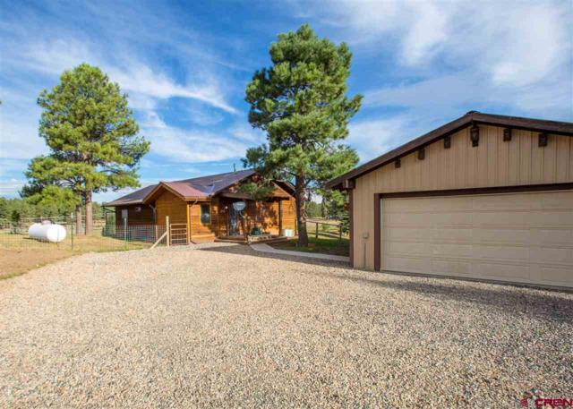 200 A Whitaker Pl, Pagosa Springs, CO 81147 (MLS #750851) :: CapRock Real Estate, LLC
