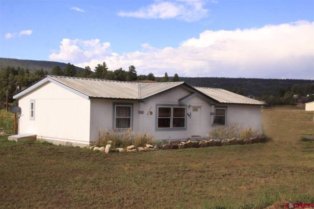 147 W Stollsteimer Road, Pagosa Springs, CO 81147 (MLS #750856) :: CapRock Real Estate, LLC