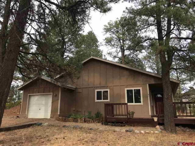 91 Cleek Court, Pagosa Springs, CO 81147 (MLS #750857) :: Durango Home Sales