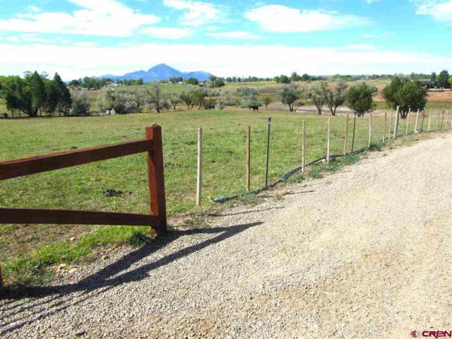 24934 Road N. 4, Cortez, CO 81321 (MLS #750858) :: Durango Home Sales