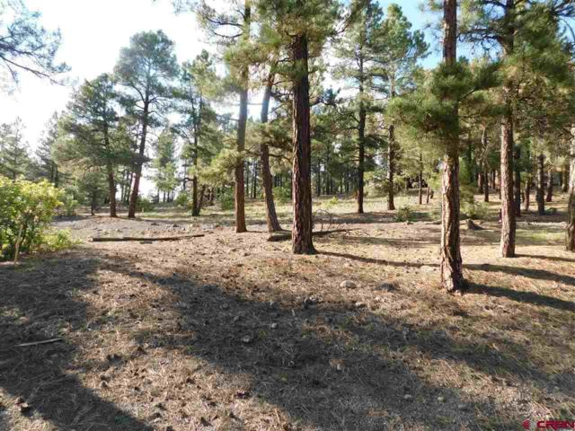 52/46 Gala Place, Pagosa Springs, CO 81147 (MLS #750860) :: CapRock Real Estate, LLC