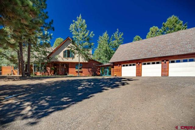 60 Jj Junction, Pagosa Springs, CO 81147 (MLS #750868) :: Durango Home Sales