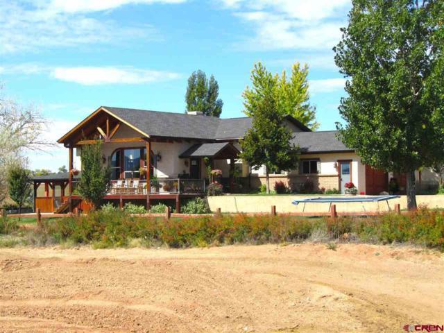 13375 Road 25, Cortez, CO 81321 (MLS #750873) :: Durango Home Sales